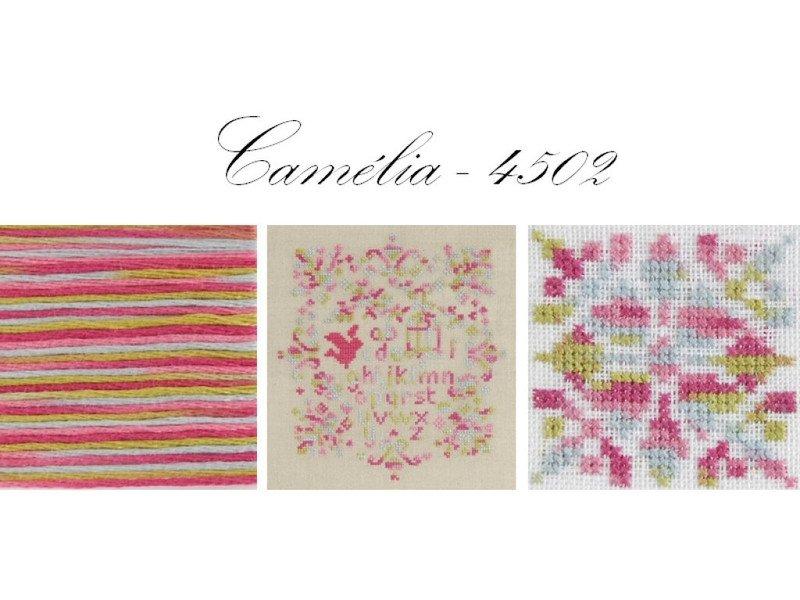 DMC 4502 Camélia