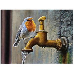 DP0105 Diamond painting vogel op buitenkraan 40x30 cm